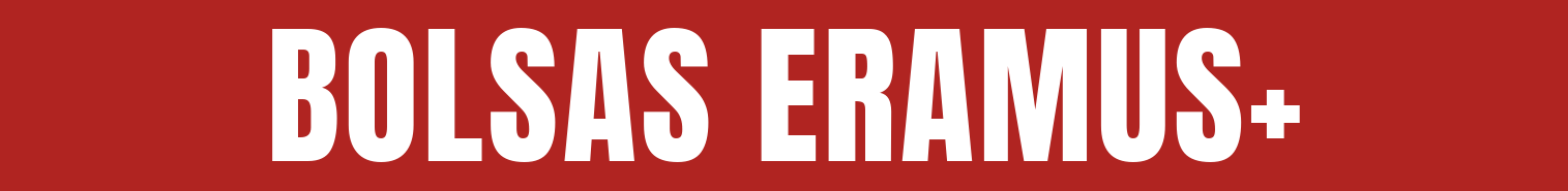 Bolsas Erasmus